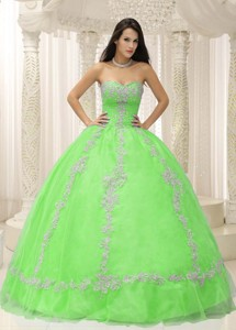 Green Sweetheart Appliques And Beaded Decorate Quinceanera Dress