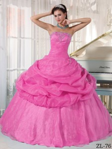 Pink Ball Gown Strapless Floor-length Organza Appliques Quinceanera Dress