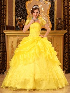 Yellow Ball Gown Strapless Floor-length Organza Appliques Quinceanera Dress
