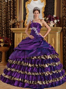 Dark Purple Ball Gown One Shoulder Floor-length Taffeta and Leopard Appliques Quinceanera Dress