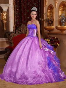 Purple Ball Gown Strapless Floor-length Organza Embroidery Quinceanera Dress