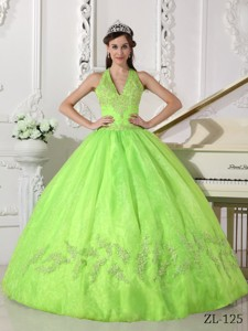 Yellow Green Ball Gown Halter Floor-length Taffeta and Organza Appliques Quinceanera Dress