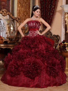 Burgundy Ball Gown Strapless Floor-length Organza Appliques Quinceanera Dress
