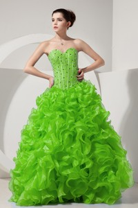 Spring Green Princess Sweetheart Floor-length Organza Beading Prom Dress