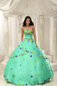 Apple Green Ball Gown Quninceaera Gown For Custom Made Appliques Decorate Bodice