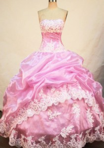 Pretty Ball Gown Strapless Floor-length Quinceanera Dress Appliques