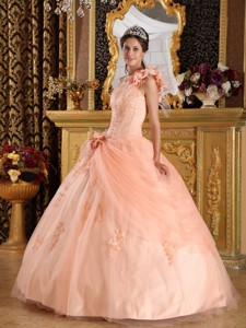Light Pink Ball Gown One Shoulder Floor-length Appliques Tulle Champagne Quinceanera Dress