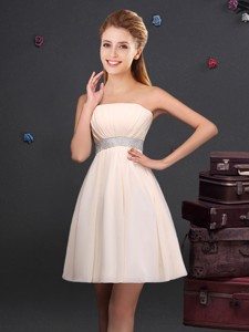 Modest Empire Strapless Ruched and Sequined Chiffon Dama Dress