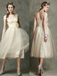 Gorgeous Straps Champagne Bridesmaid Dress With Appliques