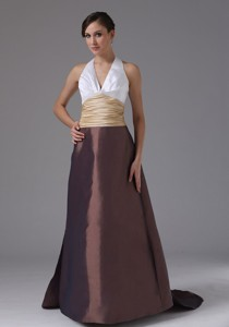 Halter And Ruched In Barstow California Evening Dress Clorful Brush Train