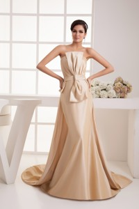 Bowknot Ruches Champagne Mother Bride Dress with Watteau Train